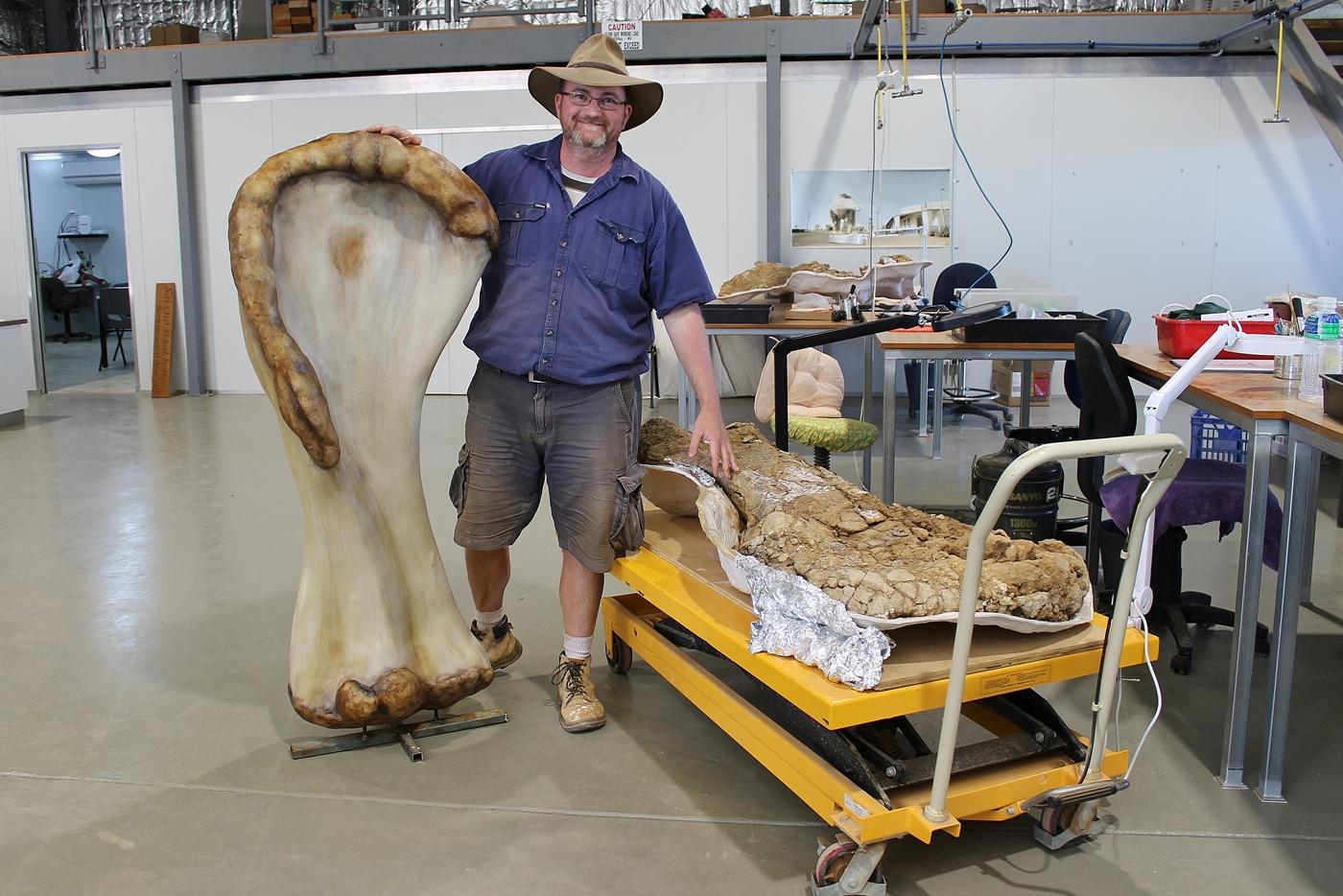 """الديناصور العملاق.. اكتشاف """"أوسترالوتيتان"""" في أستراليا"""