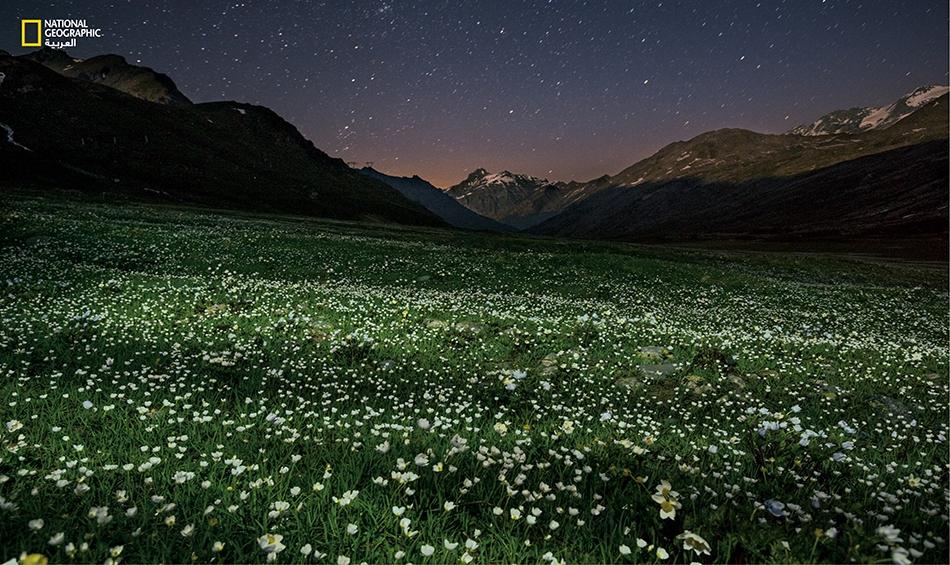 """يسدل ليلٌ صيفي ستاره على مرج جبلي مفروش بالأزهار البريّة. الطبيعة العذراء لمنتزه """"غران باراديسو"""" هي واحةٌ ريفية صافية في بلادٍ صاخبة، وسط قارّة مكتظّة بالسكان."""
