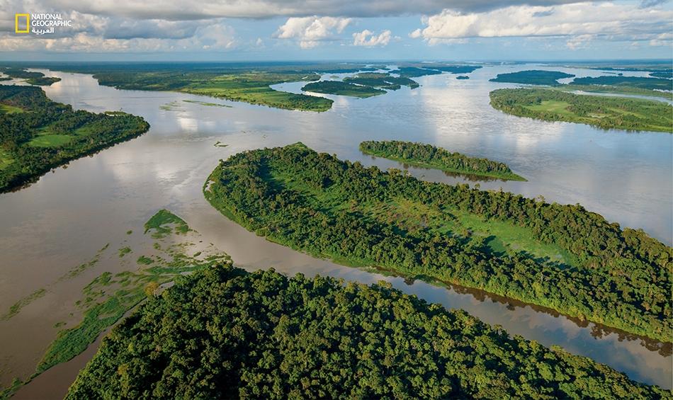 يُشكل نهر الكونغو الشاسع بقنواته الكبيرة والصغيرة حاجزا طبيعيا بين البونوبو والقردة الأخرى. وتعيش قردة الشمبانزي والغوريلا في الضفة اليمنى فقط، بينما تنفرد البونوبو بالضفة اليسرى.