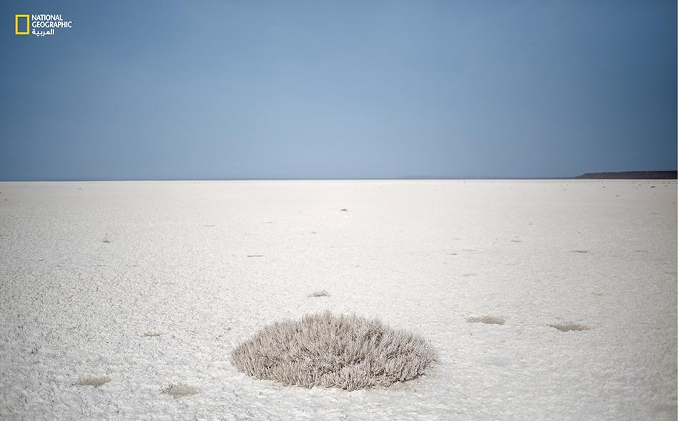 في ما مضى كانت هذه الرقعة الأرضية جزءاً من قاع البحر في كازاخستان، وقد تحولت اليوم إلى حوض جاف تعلوه رواسب الملح وتنتشر فيه المواد الكيميائية المستخدمة في زراعة القطن.