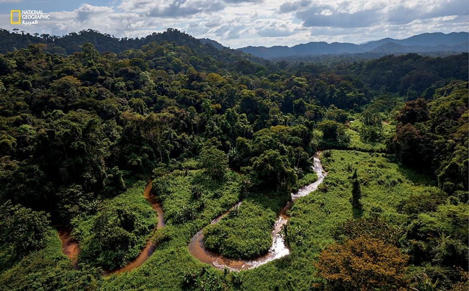 """تمتد موسكيتيا على مساحة 50 ألف كيلومتر مربع بين هندوراس ونيكاراغوا، وتأوي أكبر غابة مطرية في أميركا الوسطى وبعضاً من آخر ما تبقى من المناطق التي لم يستكشفها العلماء بعد. يقول مارك بلوتكين، المتخصص في الإثنولوجيا النباتية، إن """"لهذا المكان أهمية بالغة""""."""