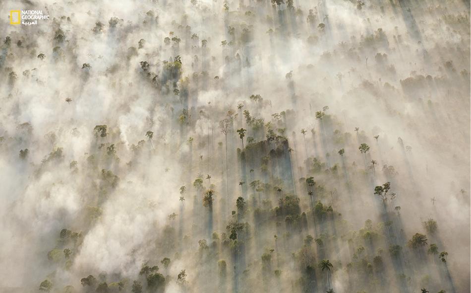 """مع تباشير الصباح، تصاعد دخان أشجار محروقة في منطقة """"ماتو غروسو"""" بغابة الأمازون بالبرازيل. وقد اجتث -في العقود الأخيرة- ربع الغابة في هذه المنطقة تقريبا لأغراض الزراعة، ونجم عن ذلك انبعاث ملايين الأطنان من الكربون في الجو. الصورة: جورج ستاينمتز"""