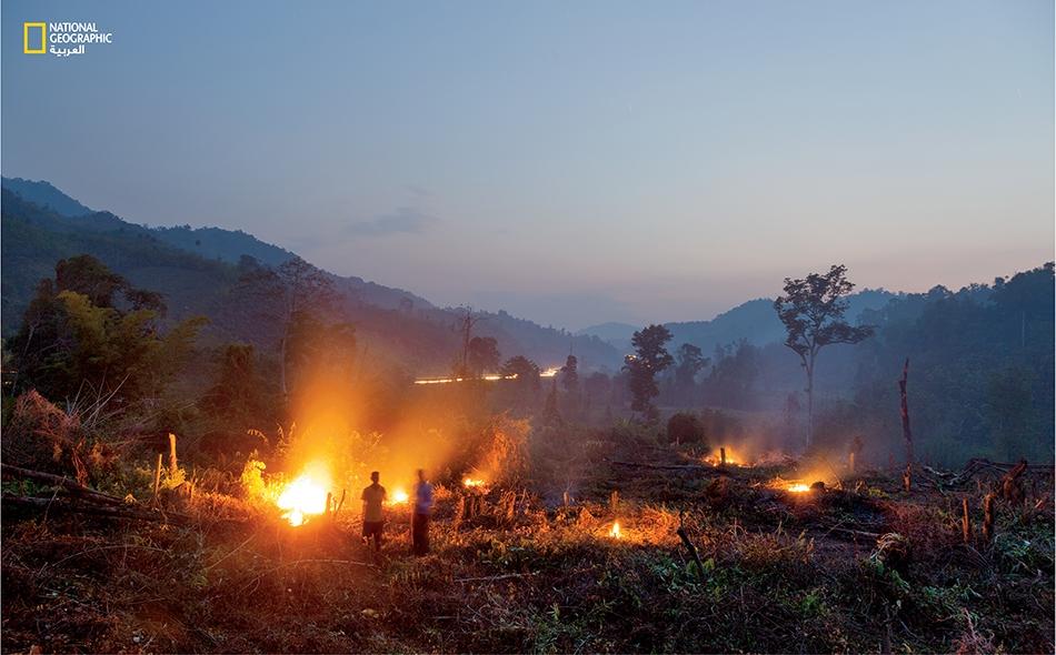 لاوس يجتث المزارعون الغابات لغرس أشجار المطاط في أرض عُبِّدت إليها طريق حديثة لربط المَزارع بمصانع الإطارات في الصين. يخشى علماء البيئة أن ينعكس هذا التدميرُ وحاجةُ الأشجار إلى كميات مياه كبيرة على النظم البيئية في منطقة جنوب شرق آسيا.