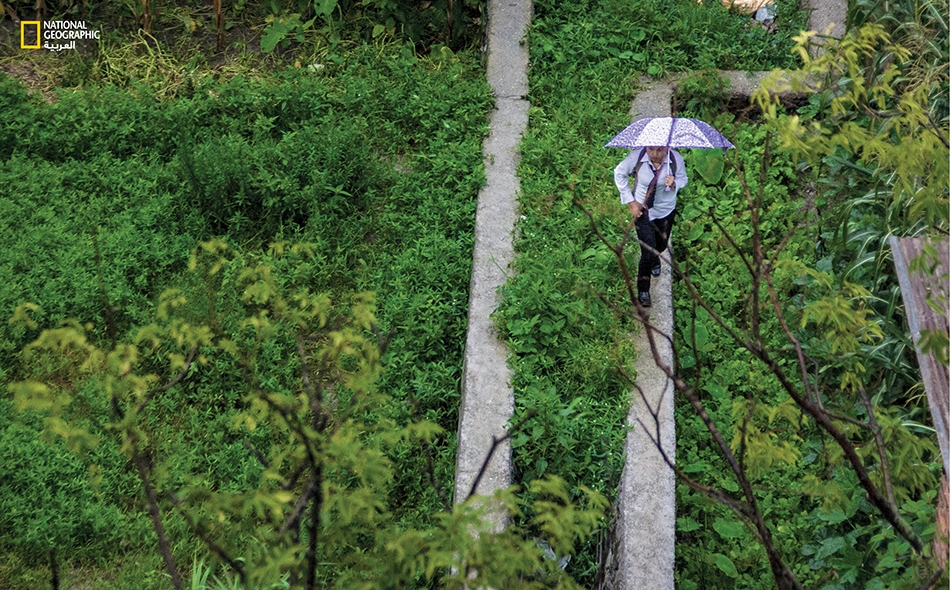 وفتاة لم تجد بُداً من تسلق سور مزرعة مجاورة بعدما تقطَّعَت السبل جراء السيول في أعقاب ليلة شتوية ماطرة.