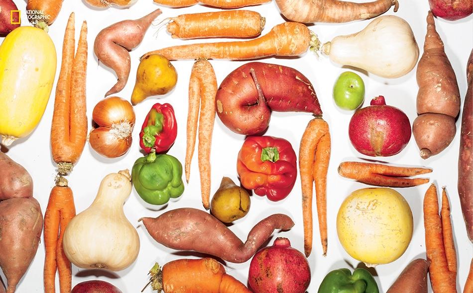 """في كل عام، يظل 2.5 مليار كيلوجرام من الفواكه والخضراوات الأميركية دون حصاد أو بيع، وغالباً ما يكون ذلك لأسباب جمالية. وثمة شركة ناشئة اسمها """"إمبيرفكت"""" ومقرها بمدينة """"إيميريفيل"""" بولاية كاليفورنيا، تشتري من المزارعين المحاصيلَ ذات الشكل الغريب وتوردها..."""