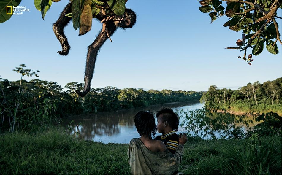 """لا يتجاوز عدد سكّان """"منتزه مانو الوطني"""" من أهالي قبيلة """"ماتسيغينكا"""" ألف نسمة، وهم موزّعون على طول نهر """"مانو"""" وروافده. يعيشون من الزراعة والصيد في الغابة، لكنهم لا يأخذون أكثر مما يضمن لهم عيش الكفاف."""