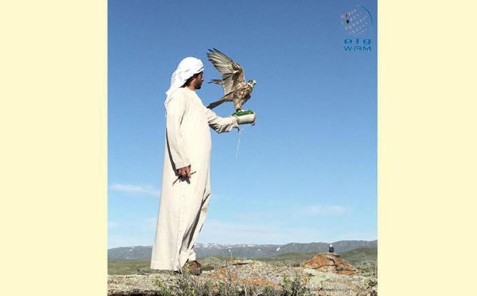 برنامج الشيخ زايد لإطلاق الصقور يدخل عامه الثاني والعشرين