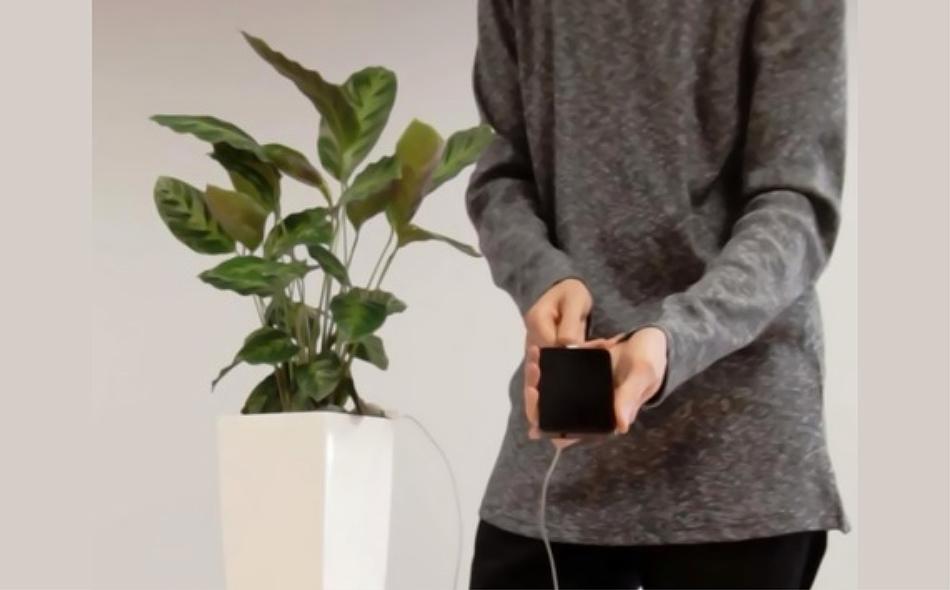 """وعاء """"بيولايت"""" لشحن الهواتف الذكية."""