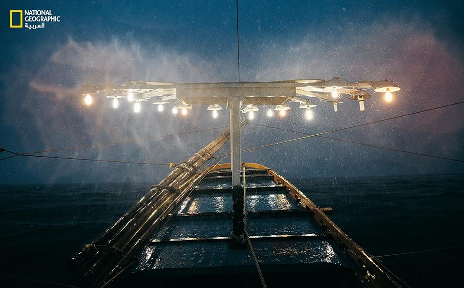 """يستخدم قاربُ """"ميليسا"""" الفلبيني الأضواءَ لجذب الأسماك نحو السفينة وسطح الماء."""