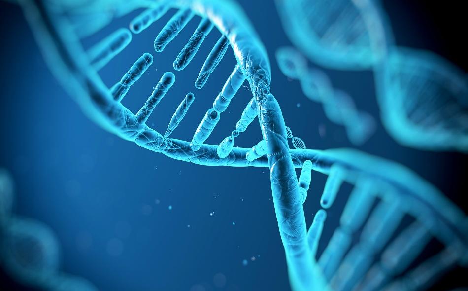أكدت الدراسة أن الخلل العشوائي في الحمض النووي يشكل نسبة أكبر بكثير مما كان يعتقد في السابق من خطر الإصابة بالسرطان.