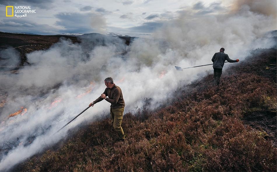 """في """"ضيعة راليا"""" بالقرب من """"كينجوسي""""، يَعمد مربّيا وحيش الصيد -""""أليستير ليون"""" (إلى اليسار) و""""ريتشارد ويليامز""""- إلى حرق انتقائي لبقع أرضية مكسوة بنبات خلنج هرم، وهي عملية تجري من شهر أكتوبر إلى أبريل."""