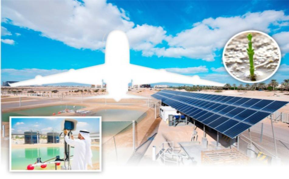يمتد هذا المشروع العملاق على مساحة هكتارين ضمن مدينة مصدر التي تعتبر المدينة منخفضة الكربون والنفايات والتي تسعى لتصبح أكثر مدن العالم استدامة.
