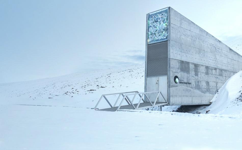 أُنشئ القبو في أرخبيل سفالبارد الواقع على مسافة نحو ألف كيلومتر من القطب الشمالي في عام 2008. الصورة: Croptrust.org