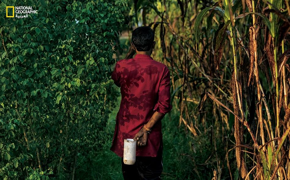 """مُزارع من قرية """"بيبلي كيرا"""" يتوغل داخل حقل لقصب السكر من أجل قضاء حاجته، حاملاً في يده وعاء ماءٍ للاستنجاء (للتطهر). في هذه القرية الواقعة بشمال مدينة دلهي، لا تتوفر سوى عائلة واحدة على مرحاض."""