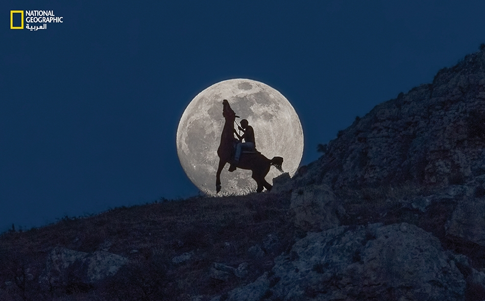 """لقطة ذات """"خلفية قمرية"""".. فارس يلجم فرسه الجموح."""