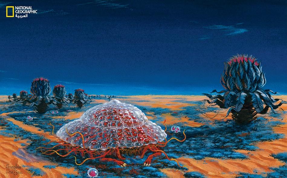 """""""فلنتخيله [أي ساكن المريخ] يتلمس طريقه بأطرافه الصغيرة الحمراء نهارا، وحين يأتي الليل يحفر حفرة يؤوي إليها"""". مقتطف من إحدى رسائل ساغان إلى أحد المحررين، في عام 1967."""