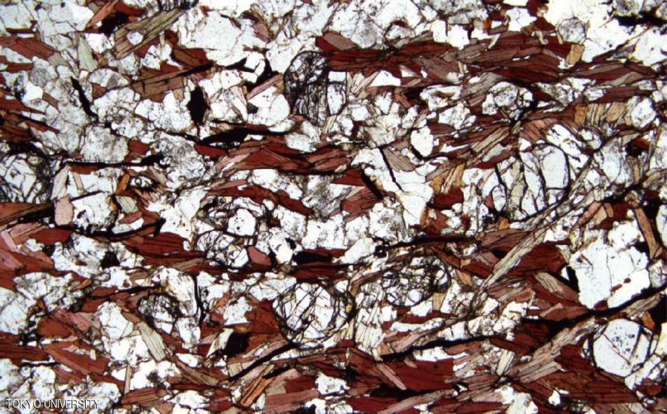 """قال علماء إنهم عثروا على أدلة غير مباشرة على الحياة، وهي قطع من الجرافيت في صخور رسوبية من شمال مقاطعة """"لابرادور"""" ويعتقدون أنها بقايا كائنات بحرية دقيقة بدائية."""