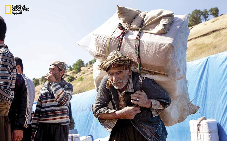 يحمل هذا الرجل الستيني (في الأعلى) الذي يبلغ وزنه 75 كيلوجراماً حمولة متنوعة من البضائع لا يقل وزنها عن 60 كيلوجراماً.