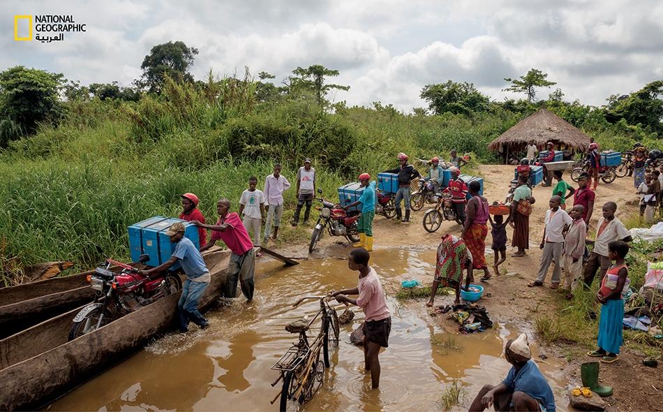 """يحمل عمال منظمة """"أطباء بلا حدود"""" في جمهورية الكونغو الديمقراطية، مبرّدات مملوءة باللقاحات رُبطت إلى دراجاتهم النارية، ويعبرون بها نهراً قريباً من إقليم """"مونغا"""" الذي تفشى فيه مرض الحصبة."""