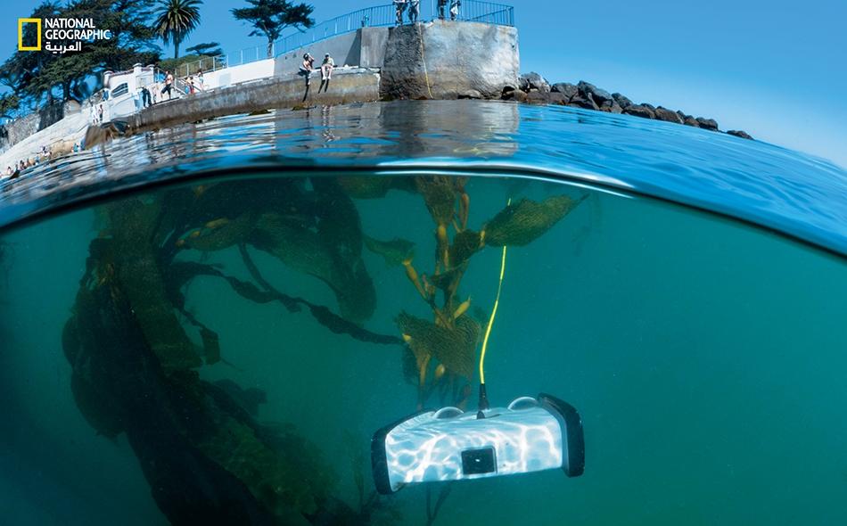 """يأمل ديفيد لانغ أن تساعد روبوتاته -كهذا في خليج """"مونتيري"""" بولاية كاليفورنيا- سكان اليابسة على تعميق فهمهم لأعماق المحيط."""