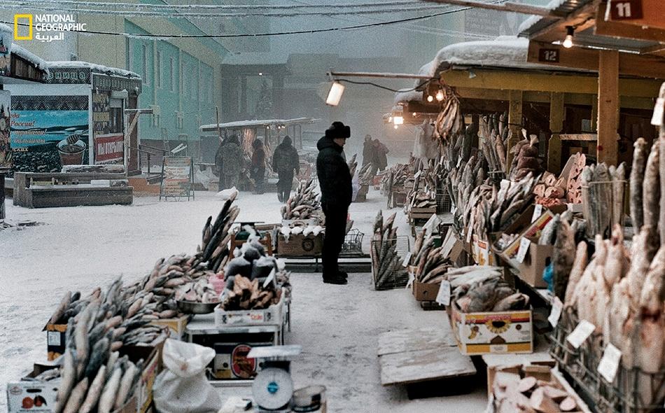 """يعيش ما يقرب من 300 ألف شخص في ياكوتسك التي تشتهر بكونها أبرد مدينة في العالم. ويعد ميناؤها الواقع على نهر """"لينا"""" مصدر الأسماك التي تملأ الأسواق وتظل باردة في فصل الشتاء إلى حد التصلب."""