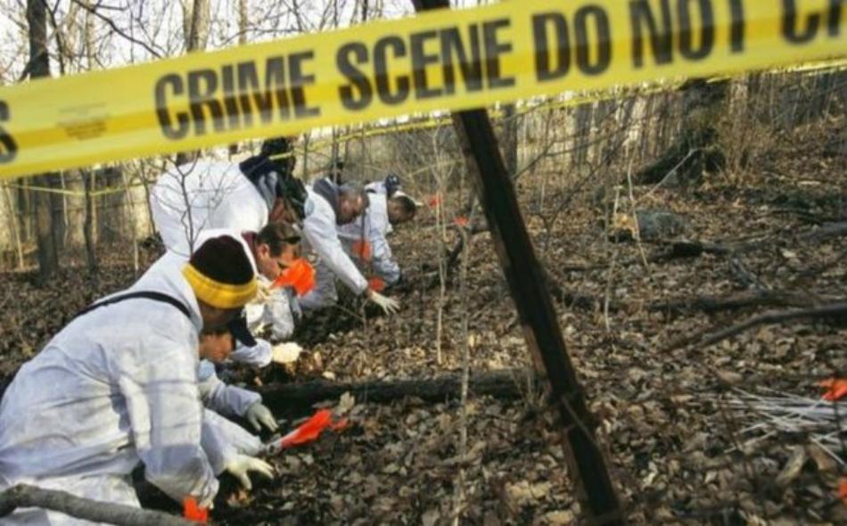 الاكتشاف الجديد يمكن أن يساعد في أعمال الطب الشرعي وتحديد أسباب وتوقيت الوفاة. الصورة: Peter Menzel/Science Photo Library