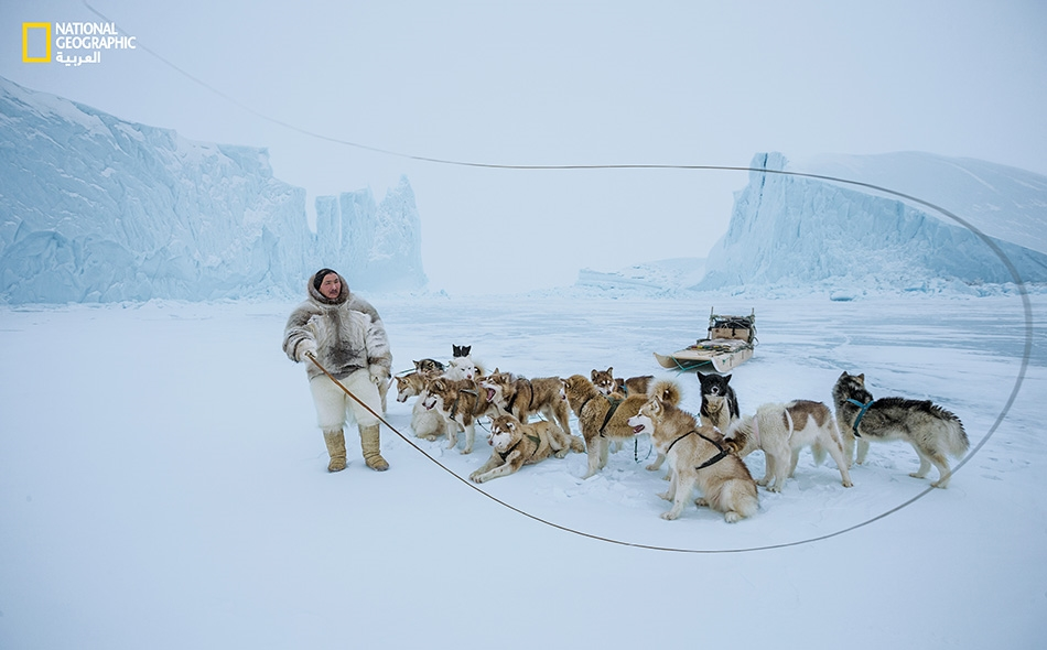 """يشير السروال المصنوع من فرو دب قطبي إلى أن """"نايمانغيتسوك كريستيانسن"""" -من شعب الإنويت القاطن في """"كاناك"""" شمال غرب غرينلاند- هو صياد محنك. مع تراجع سُمْك الجليد البحري كل عام، صارت رحلاته على متن مزلجة مجرورة بالكلاب أخطر فأخطر. Paul Nicklen"""