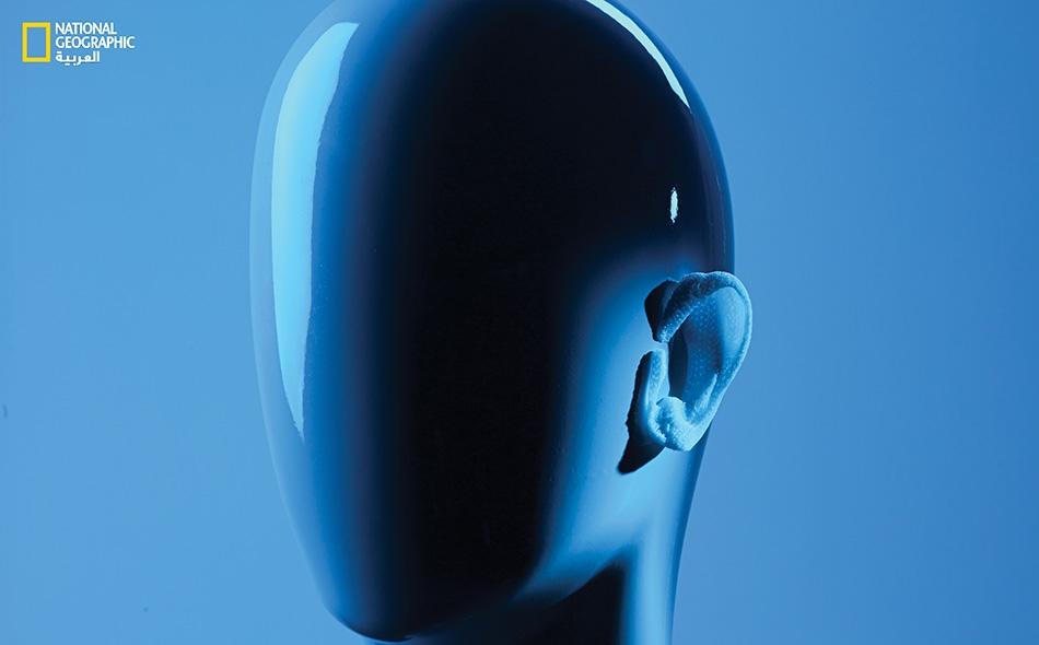 لطباعة أذن، تقوم طابعة حيوية بإنشاء سقالة من البوليمر -كما يظهر في الصورة- وفي الوقت نفسه تحشوها بالخلايا البشرية التي تشكل الغضاريف.