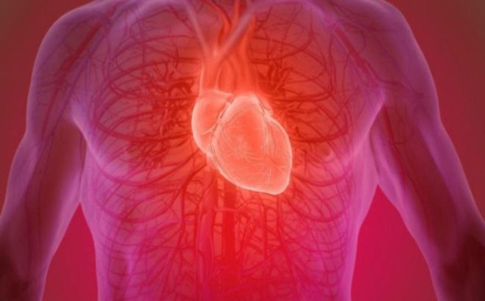 كثيرا ما يعاني الناجون من النوبة القلبية من فشل القلب الاحتقاني أو قصور القلب المزمن. ويقدر عدد المصابين بقصور القلب في المملكة المتحدة بنحو 450 ألف شخص. الصورة: GETTY IMAGES