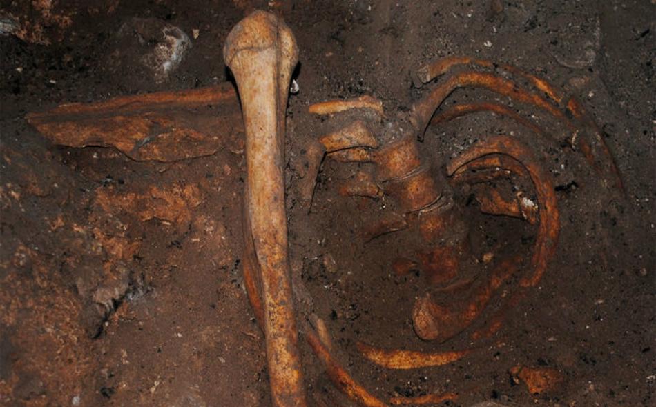"""أعلن علماء الأحافير في منتصف العام الماضي اكتشاف جمجمة أقدم إنسان عاقل يبلغ عمرها 300 ألف عام في المغرب بمغارة """"تافوغالت"""". الصورة: sciencemag.org"""