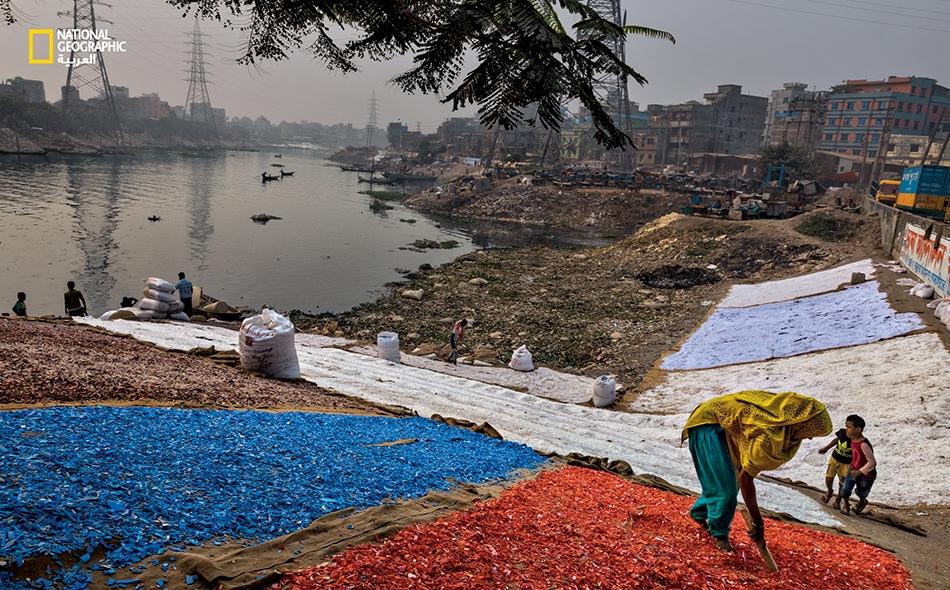 """رقاقات ملوّنة من البلاستيك تُجفّف على ضفاف نهر """"بوريغانغا""""، بعد جمعها وغسلها وفرزها يدوياً. يعمل نحو 120 ألف فرد في صناعة إعادة التدوير غير الرسمية داخل العاصمة البنغالية """"دكا"""" وحولها، حيث تعيش 18 مليون نسمة تقريباً، تنتج نحو 10 آلاف طن من النفايات..."""