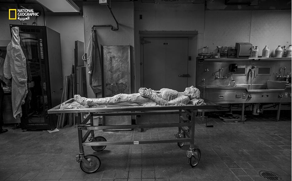 """مارس 2015 – في المرحلة الأولى من حياة """"بوتر"""" بعد الموت، ترقد جثتها وهي مطلية بكحول الـ""""بوليفينيل"""" في المختبر، تمهيدا لتجميدها في برودة تبلغ 26 درجة مئوية دون الصفر، ثم تقطيعها إلى 27000 شريحة، ومن ثم تحويلها إلى جثة رقمية """"حية""""."""