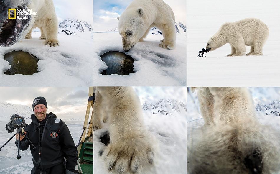 """تحت شمس منتصف الليل، لدى فوهة تنفس في جليد القطب الشمالي، عثر دب قطبي على شيء جديد: كاميرا وجهاز استشعار حركة في ملكية """"أودون ريكاردسن"""". شم الدب الكاميرا وداعبها بكفه، وطرحها في الماء. بعد عام خرج ريكاردسن في رحلة لاستعادتها."""