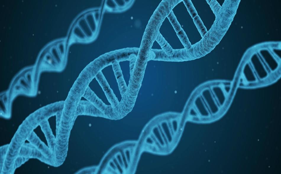 """أثار جيان كوي -الأستاذ المساعد في """"الجامعة الجنوبية للعلوم والتكنولوجيا"""" بمدينة """"شنغن"""" الصينية- عاصفة من الجدل في الأوساط العلمية والأخلاقية على مستوى العالم، عندما صرح باستخدامه تقنية """"كريسبر-كاس9"""" لتعديل جينات التوأمتين قبل ولادتهما في نوفمبر الماضي."""