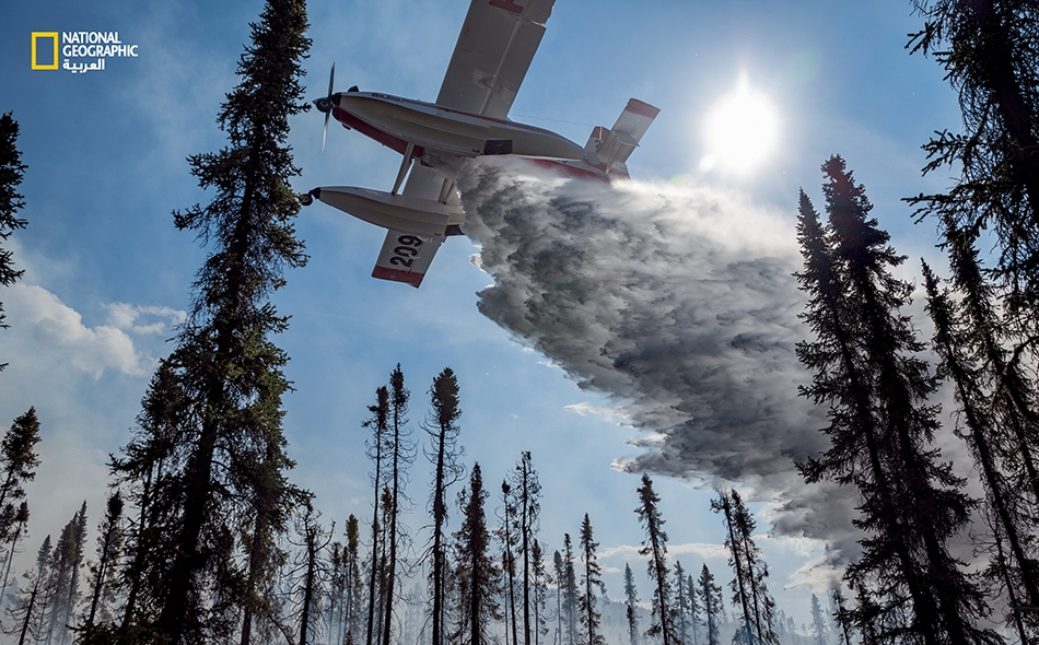 """تلقي طائرة من نوع (Fire Bosses) بالمياهَ لمساعدة طاقم أرضي يكافح """"الحريق 320"""" في سلسلة جبال """"بروكس"""" في شهر يونيو عام 2016. للطائرة محرك وحيد وهي مزودة بخزانات طافية تستوعب في دقائق معدودات 3000 لتر من الماء؛ وهي تغرف ماءها هنا من بحيرة """"إينياكوك""""..."""