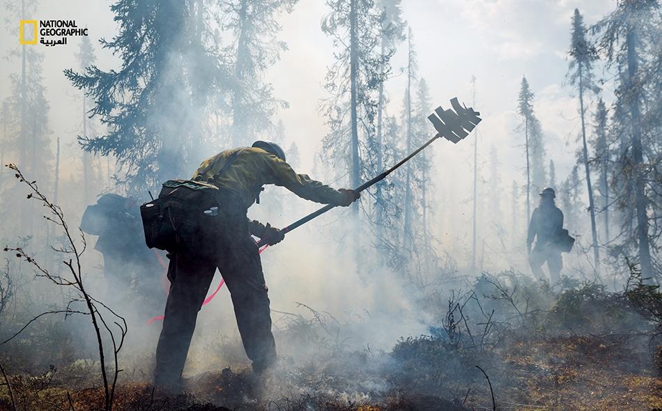 يستخدم الإطفائيون المظليون مضارب (وهي أشرطة مطاطية صلبة مثبتة على قضبان مرنة) لإخماد النباتات المشتعلة وكتل الأعشاب تحتها، المبللة بفعل الطبقات الجليدية الذائبة. تعد الغابات الصنوبرية المستنقعية -أو التايغا- خاصية من خصائص المرتفعات الشمالية.