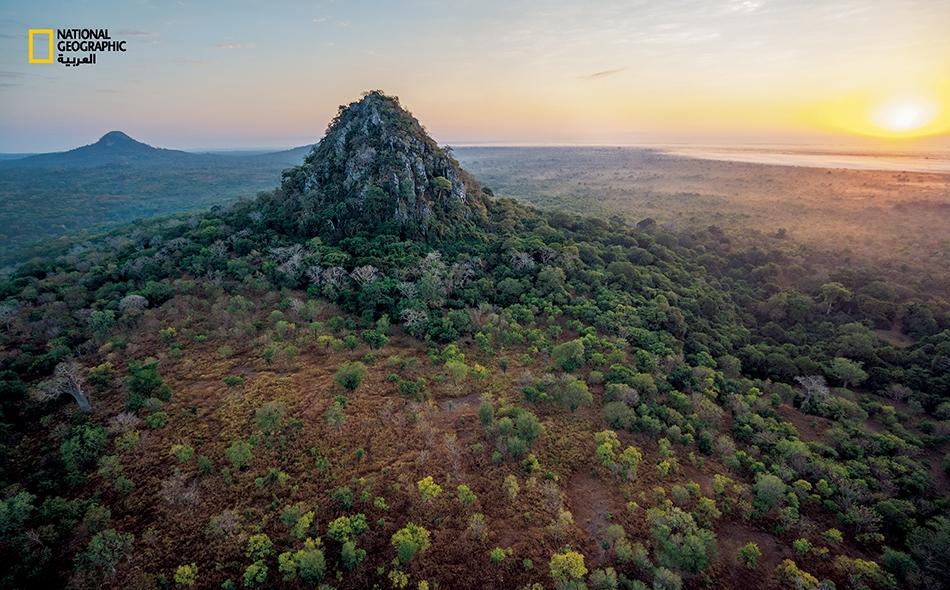 """يمتد """"منتزه غورونغوزا الوطني"""" على مساحة 4000 كيلومتر مربع في الطرف الجنوبي من """"وادي الصدع العظيم"""" بإفريقيا، ويشمل سفوح الجبال وغابات مرتفعة وأودية ذات أجراف، وسافانا نخيل، وأراضي رطبة. ويتخلل هذا المدَّ من الغابات """"جبالُ بونغا الجزيرية""""، وهي بقايا..."""