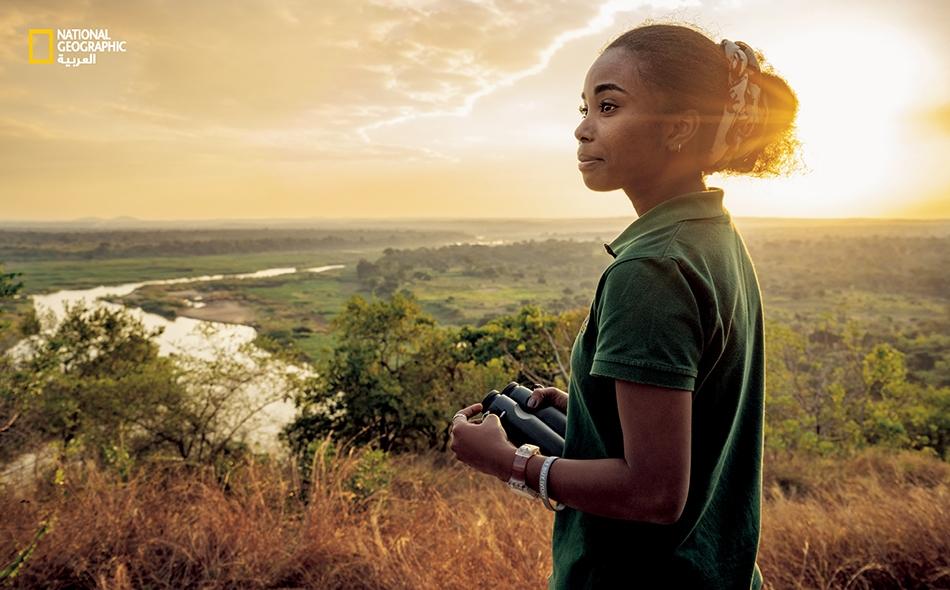 """تتولى """"دومينيك غونسالفيس""""، عالمة بيئة شابة من موزمبيق وزميلة ناشيونال جيوغرافيك، إدارة برنامج فيلة غورونغوزا. ينتمي علماء ومديرو المنتزه إلى دول متعددة، ولكن ثمة تزايد في عدد المواطنين الموزمبيقيين الذين يضطلعون بأدوار قيادية."""