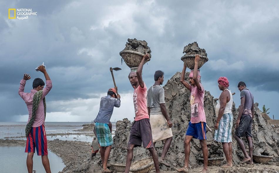 """عمال بأجر يومي يرممون التحصينات الترابية المضادة للفيضانات على طول جوانب جزيرة """"ساغار"""". على الرغم من تصاعد حدة الأعاصير والعواصف، فإن عدد القتلى آخذ في الانخفاض بفضل تحسن خدمات الطوارئ والإيواء."""