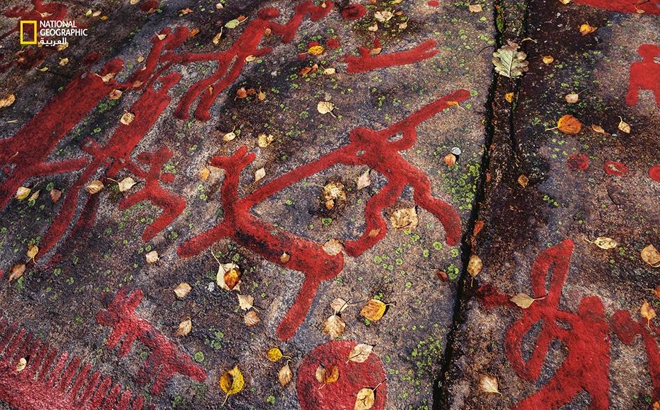 تُبرز هذه النقوش الصخرية القديمة (معززة بطلاء أحمر حديث) في السويد، التحولات الثقافية التي جاء بها المهاجرون، بدءًا من الصيادين جامعي الثمار الذين قدموا من إفريقيا خلال العصر الجليدي وتتبعوا الأنهار الجليدية المنحسرة شمالا. ما زال حمضهم النووي سائدا،...