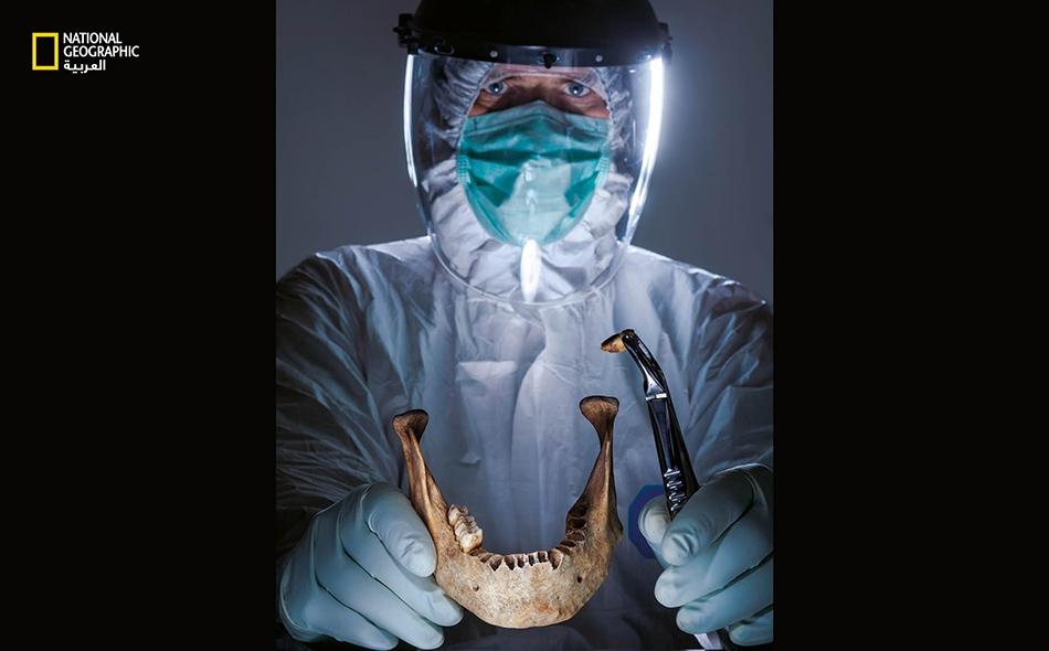 """يتيح الحمض النووي المستخلص من أسنان وعظام قديمة، للباحثين، فهم التحولات السكانية على مر الزمان. وقد مكَّنَ انخفاض تكلفة اختبارات الحمض النووي العلماءَ في مختبر كهذا في مدينة """"جينا"""" بألمانيا من الكشف عن أنماط الهجرة البشرية في الماضي."""