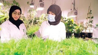 باحثتان إماراتيتان تعملان على نظام بيولوجي جديد لإنتاج النباتات من دون تغيير القيمة الغذائية. الصورة: من المصدر.