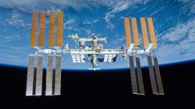 """تأتي تجربة إرسال بذور النخيل إلى المحطة الدولية ضمن مشروع """"تجربة النخلة في الفضاء"""" في إطار السعي للوصول إلى إمكانية زراعة شجر النخيل على سطح كوكب المريخ في المستقبل. الصورة: NASA"""