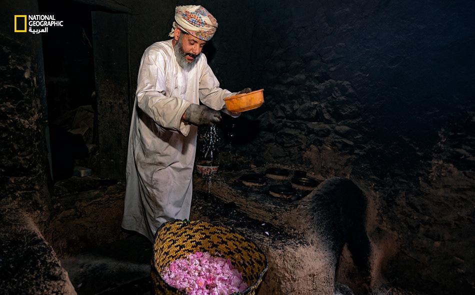 """بعد جمع الورد، تبدأ أولى المراحل بطبخه فوق النار. وهنا يقوم """"سالم التوبي"""" برش قليل من الماء فوق الورد حتى يكتسب لونًا براقًا قبل وضعه في """"الدهجان"""" مدة ثلاث ساعات ونصف الساعة."""