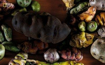 على قائمة الطعام: بطاطس البيرو الخارقة
