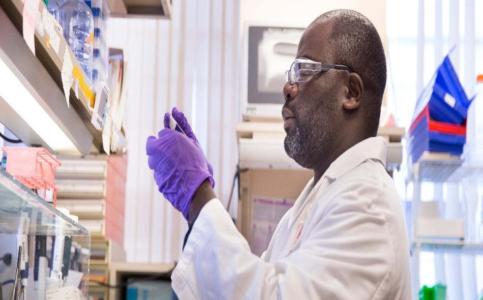 """أوضحت الشركة الأميركية بأنه قد يكون لديها عقار مخصص لعلاج مرض """"كوفيد-19″، ومرخص باستخدامه بحلول شهر سبتمبر، إذا مضى كل شيء بشكل جيد، فيما يتعلق بأي من العلاجين بالأجسام المضادة اللذين تختبرهما. الصورة: lilly.com"""