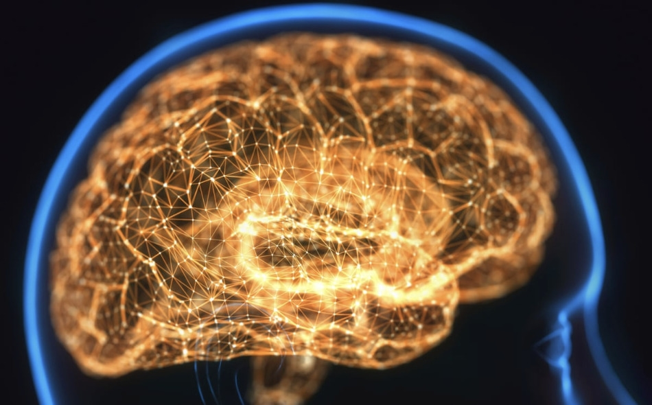 """أظهرت نتائج دراسة أولية أن مرض """"كوفيد-19"""" يمكن أن يضر بالمخ ويسبب مضاعفات مثل الجلطات الدماغية والالتهابات والذهان وأعراض تشبه الخرف في بعض الحالات الشديدة. الصورة: KTSDesign/Getty/Science Photo Library"""