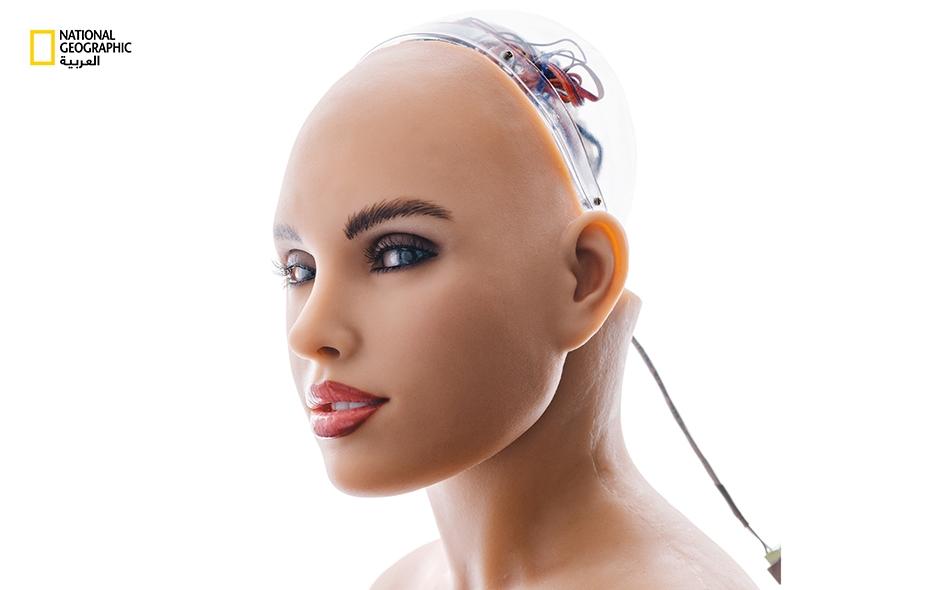 يبتكر بعض علماء الروبوتات آلات تحاكي البشر بالتفصيل؛ مثل (Harmony)، وهي رأس معبِّرة ناطقة تُثَبَّت على دمية من السيليكون والفولاذ، صنعتها شركة (Abyss Creations) في كاليفورنيا.