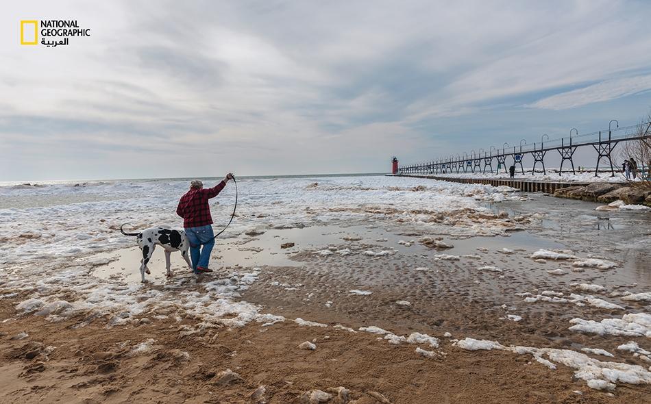 """1 مارس 2020 – بحيرة ميشيغان: امرأة وكلبها يتمشيان في الشاطئ الموحل على طول بحيرة """"ميشيغان"""" غير المجمَّدة، حيث لم يتجاوز الغطاء الجليدي الشتوي لموسم 2020-2019 نسبة 20 بالمئة."""