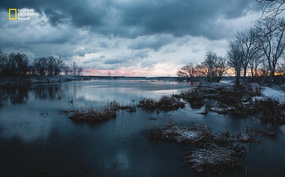 """8 يناير 2020- بحيرة إيري: في يـوم مـن أيام شهر يناير، تجري المياه الخالية من الجليد عبر مسافات بعيدة في """"منتزه جزيرة بريسك"""" لدى بحيرة """"إيري""""؛ وهو دليل واضح على أن فصول الشتاء بالمنطقة آخذة في الاحترار."""
